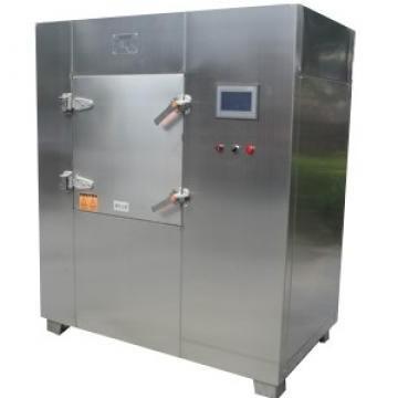 Industrial Microwave Gas Dryer Equipment in Food Industry Fruit Dryer