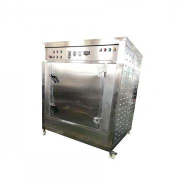 Stainless Steel Big Capacity Microwave Vacuum Dryer Fruit with CE