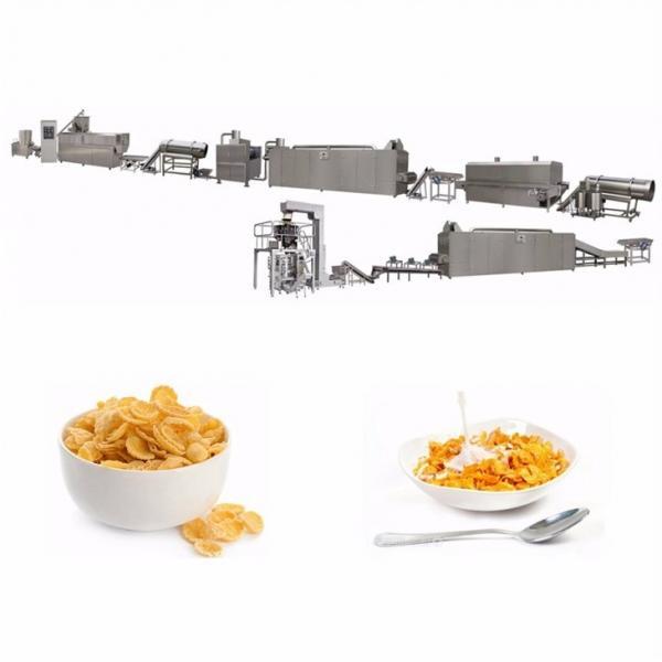 Twin Screw Extruder Corn Flakes Machine #1 image