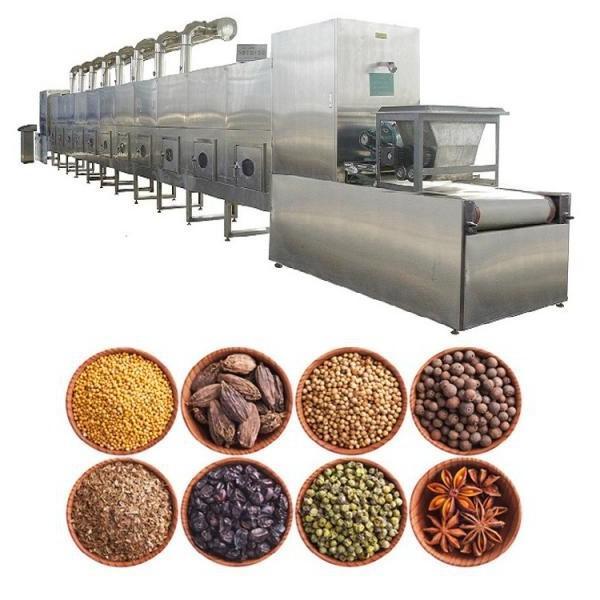 Microwave Jujube Dates Drying Sterilization Machine #2 image